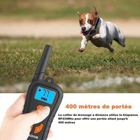 Collier de dressage électronique pour chien